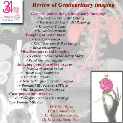 Review of Genitourinary imaging